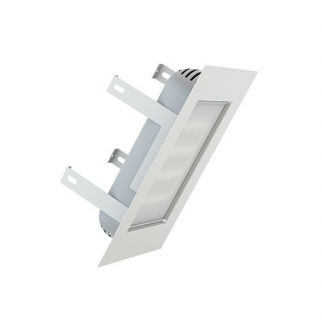 Светодиодный светильник ДВУ 07-78-850-Д110